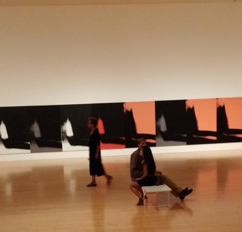 MOCA Andy Warhol Shadows photos by Rhonda P. Hill (8), edited